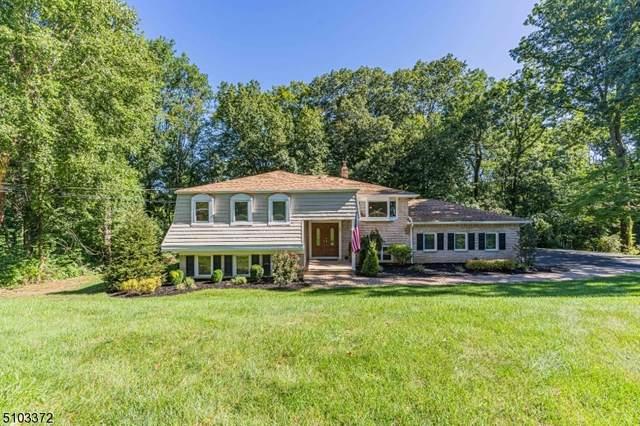 43 Parker Dr, Morris Plains Boro, NJ 07950 (MLS #3741069) :: SR Real Estate Group