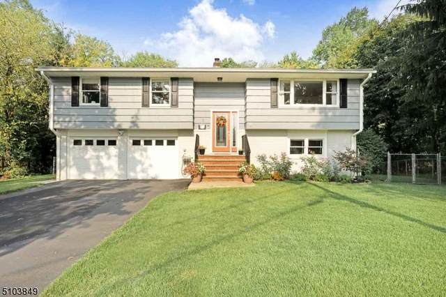 1131 Beechwood Ave, Middlesex Boro, NJ 08846 (MLS #3741169) :: Kaufmann Realtors