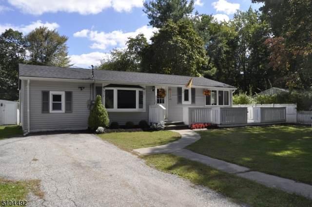 905 Iris Cir, Stillwater Twp., NJ 07860 (#3741737) :: NJJoe Group at Keller Williams Park Views Realty
