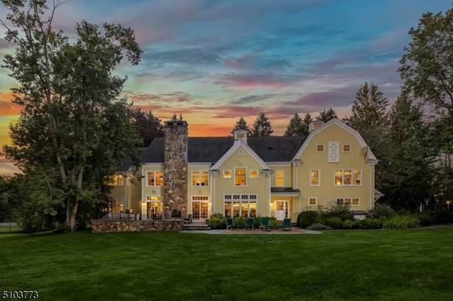 0 Village Rd, Harding Twp., NJ 07976 (MLS #3741819) :: Coldwell Banker Residential Brokerage