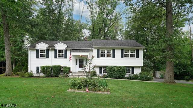 107 Sagamore Dr, New Providence Boro, NJ 07974 (MLS #3742007) :: Stonybrook Realty