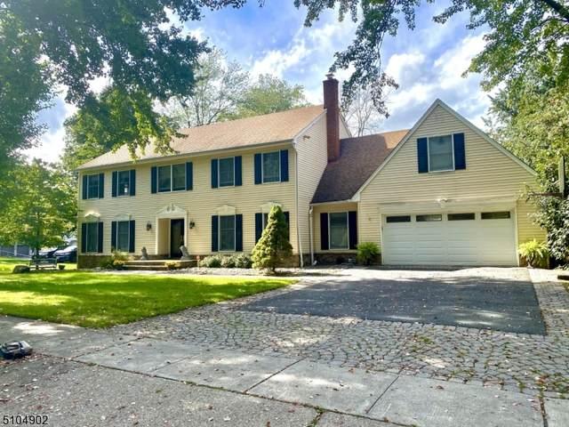 17 Apple Tree Ln, Roxbury Twp., NJ 07850 (MLS #3742203) :: The Sue Adler Team