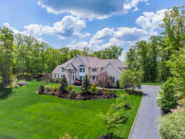 5 Nicholas Dr, Kinnelon Boro, NJ 07405 (MLS #3742294) :: SR Real Estate Group