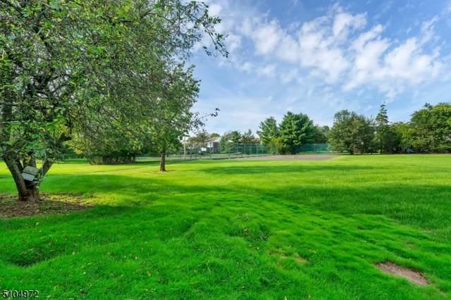3012 Cromwell Ct, Hillsborough Twp., NJ 08844 (MLS #3742525) :: The Michele Klug Team | Keller Williams Towne Square Realty