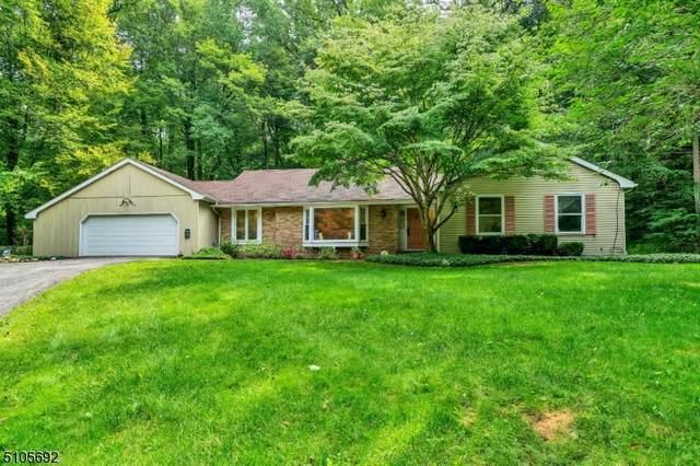 59 Pleasant Grove Rd, Washington Twp., NJ 07853 (MLS #3742893) :: Zebaida Group at Keller Williams Realty