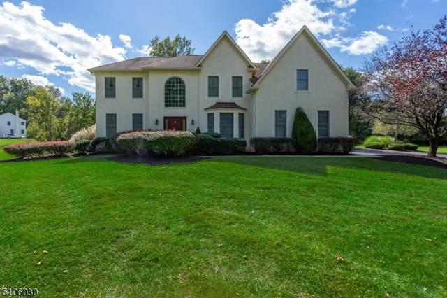 5 Chimney Hill Drive, West Amwell Twp., NJ 08530 (MLS #3743160) :: RE/MAX Select