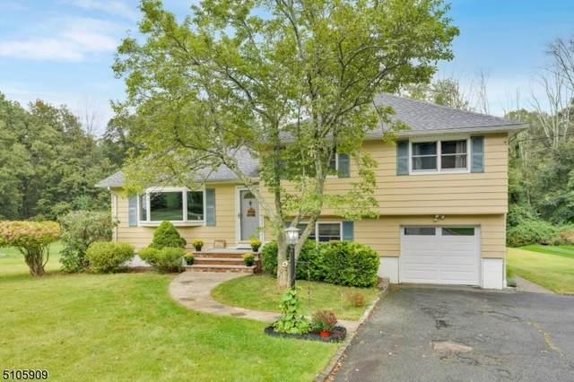 245 Dover Chester Rd, Randolph Twp., NJ 07869 (MLS #3743374) :: RE/MAX Select