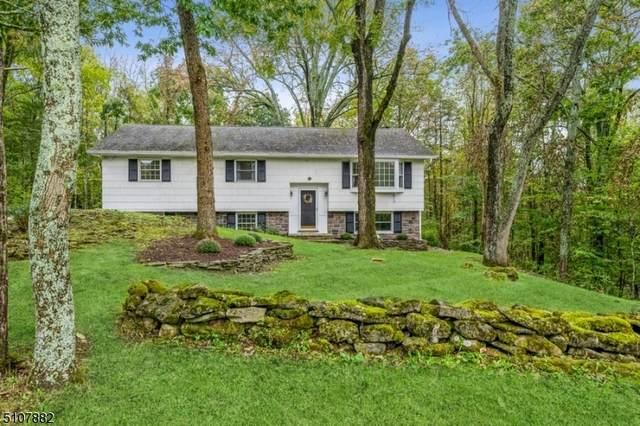 903 Dogwood Ter, Stillwater Twp., NJ 07860 (#3744752) :: Rowack Real Estate Team