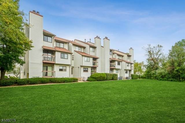 3606 Royce Ct, Hillsborough Twp., NJ 08844 (MLS #3745667) :: Kiliszek Real Estate Experts