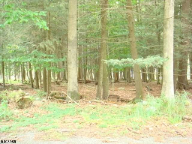 102 Hidden Glen, Montague Twp., NJ 07827 (MLS #3745794) :: RE/MAX Select