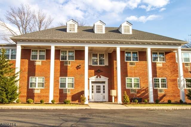 530 Park Ave #115, Scotch Plains Twp., NJ 07076 (#3745830) :: Daunno Realty Services, LLC