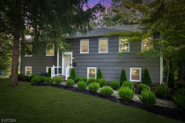 61 Ryder Way, New Providence Boro, NJ 07974 (MLS #3745985) :: SR Real Estate Group