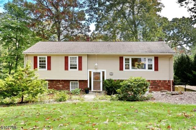 29 Catherine Ct, Ringwood Boro, NJ 07456 (MLS #3745996) :: The Karen W. Peters Group at Coldwell Banker Realty