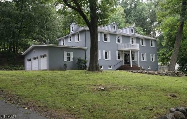188 Sand Shore Rd, Mount Olive Twp., NJ 07828 (MLS #3746324) :: The Dekanski Home Selling Team