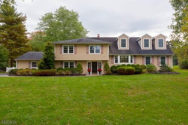 21 Meadowview Rd, Bernards Twp., NJ 07920 (MLS #3746355) :: The Dekanski Home Selling Team