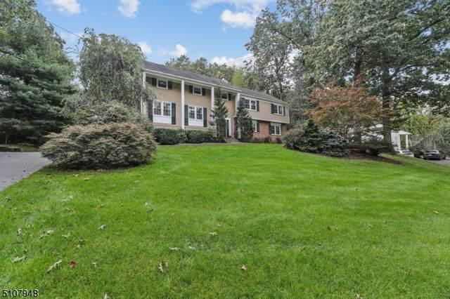 22 Green Hill Rd, Springfield Twp., NJ 07081 (MLS #3746370) :: The Dekanski Home Selling Team