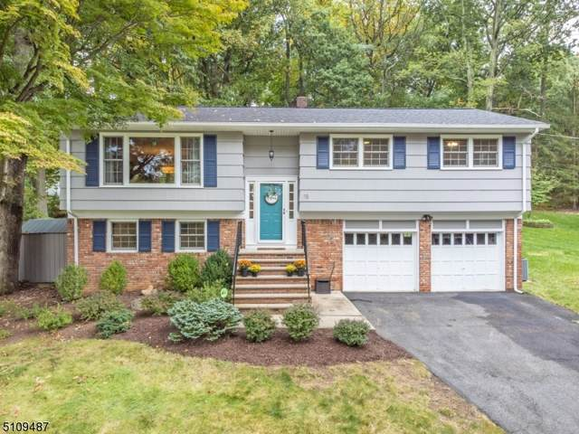 15 Dorothy Dr, Morris Twp., NJ 07960 (MLS #3746386) :: SR Real Estate Group
