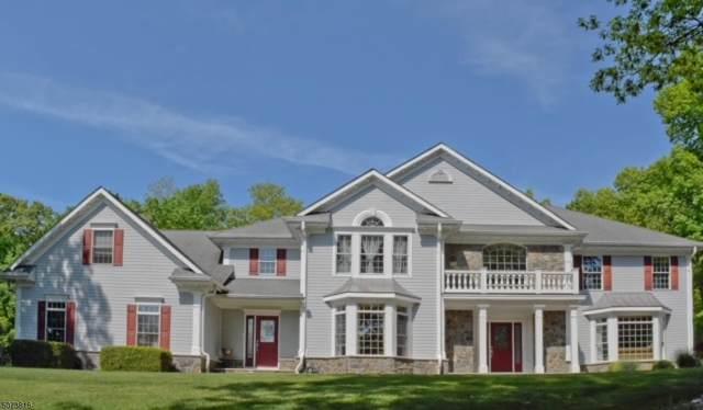 740 Woodport Rd, Sparta Twp., NJ 07871 (MLS #3746652) :: The Sikora Group