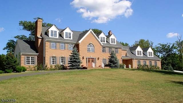 370 Dutchtown Rd, Hillsborough Twp., NJ 08844 (#3747391) :: NJJoe Group at Keller Williams Park Views Realty