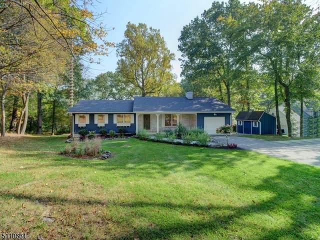 1 Frog Pond Rd, Blairstown Twp., NJ 07832 (#3747524) :: Rowack Real Estate Team