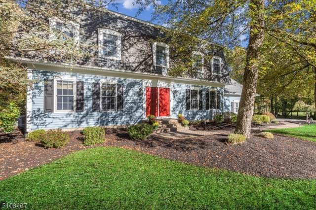 11 Rickland Dr, Randolph Twp., NJ 07869 (#3747534) :: Rowack Real Estate Team