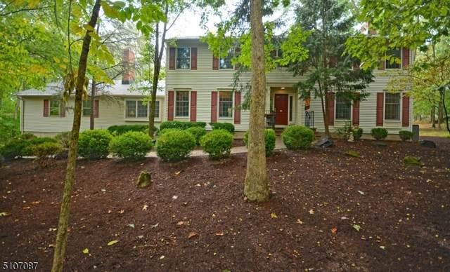 893 Tok Pl, Bridgewater Twp., NJ 08807 (MLS #3747700) :: Zebaida Group at Keller Williams Realty