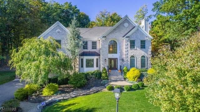 9 Nancy Ct, Rockaway Twp., NJ 07866 (MLS #3747793) :: Zebaida Group at Keller Williams Realty