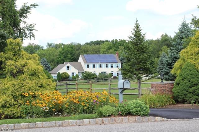16 Green Farm Ln, Delaware Twp., NJ 08559 (MLS #3330920) :: The Dekanski Home Selling Team