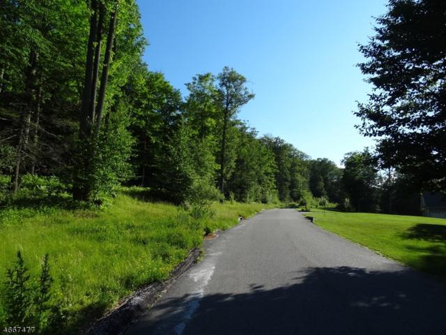 45 Roaring Brook Way, West Milford Twp., NJ 07480 (MLS #3345773) :: William Raveis Baer & McIntosh