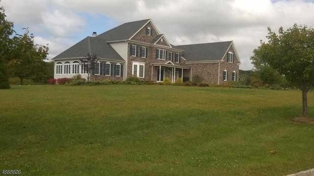 3 Chapel Hill Ct, Sparta Twp., NJ 07871 (MLS #3346303) :: The Dekanski Home Selling Team