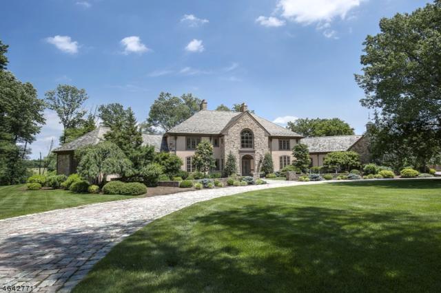 222 E Fox Chase Rd, Chester Twp., NJ 07930 (MLS #3359461) :: The Dekanski Home Selling Team