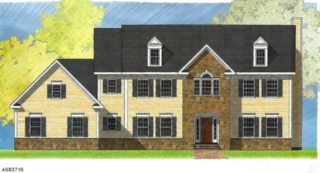 0 Parsonage Hill Drive, Branchburg Twp., NJ 08876 (MLS #3362150) :: SR Real Estate Group