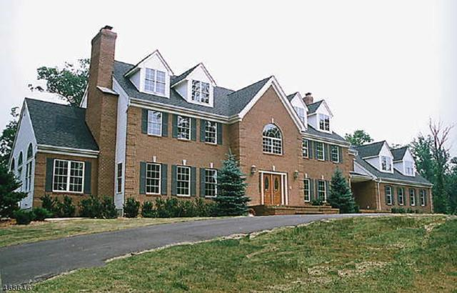 370 Dutchtown Zion Rd, Hillsborough Twp., NJ 08844 (MLS #3362465) :: The Dekanski Home Selling Team