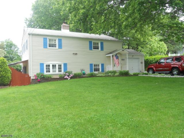 3 Richardsville Rd, Ogdensburg Boro, NJ 07439 (MLS #3364013) :: The Dekanski Home Selling Team