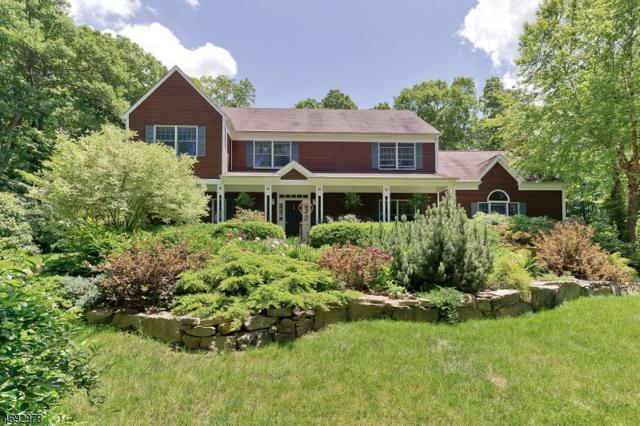 204 Meadow View Lane, Lebanon Twp., NJ 08826 (MLS #3369069) :: The Dekanski Home Selling Team