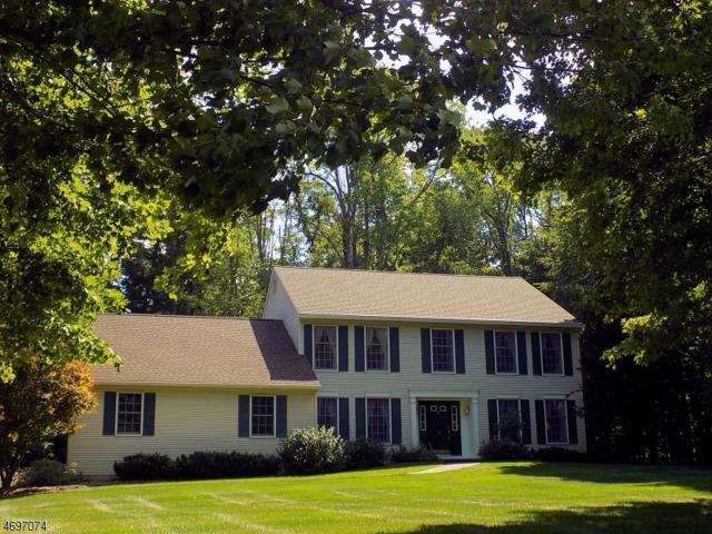 8 Higgins Dr, Vernon Twp., NJ 07462 (MLS #3372105) :: The Dekanski Home Selling Team
