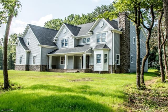 3 Mary Farm Road, Denville Twp., NJ 07834 (MLS #3376595) :: The Dekanski Home Selling Team