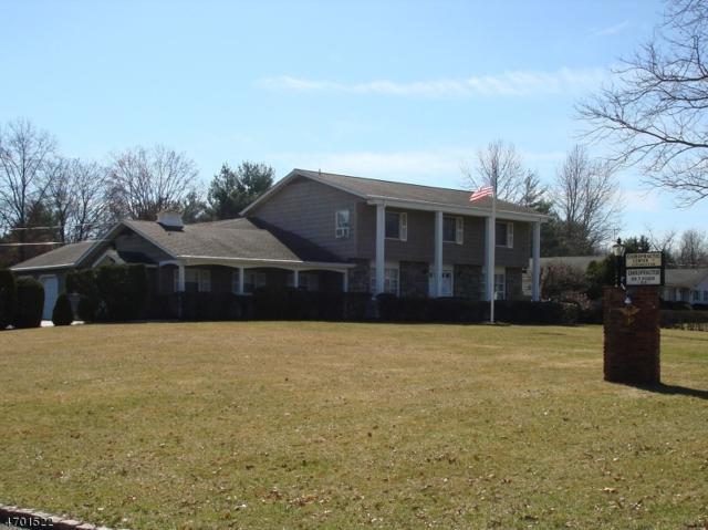 313 Walnut St, Livingston Twp., NJ 07039 (MLS #3377018) :: The Dekanski Home Selling Team