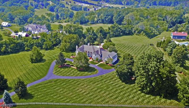 6 Winston Farm Ln, Mendham Twp., NJ 07931 (MLS #3381103) :: The Dekanski Home Selling Team