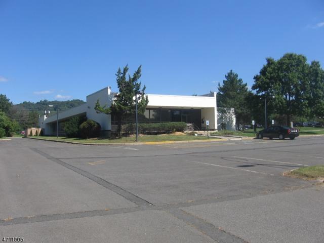 229 Adamsville Rd, Bridgewater Twp., NJ 08807 (MLS #3385034) :: RE/MAX First Choice Realtors