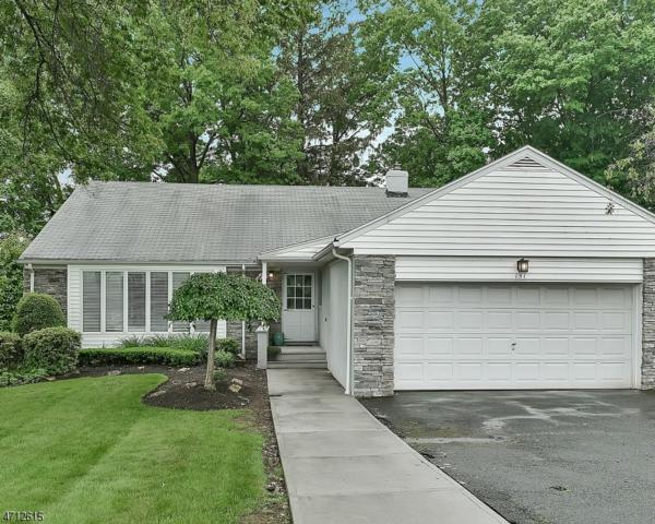 151 Haddenfield Rd, Clifton City, NJ 07013 (MLS #3386481) :: The Dekanski Home Selling Team