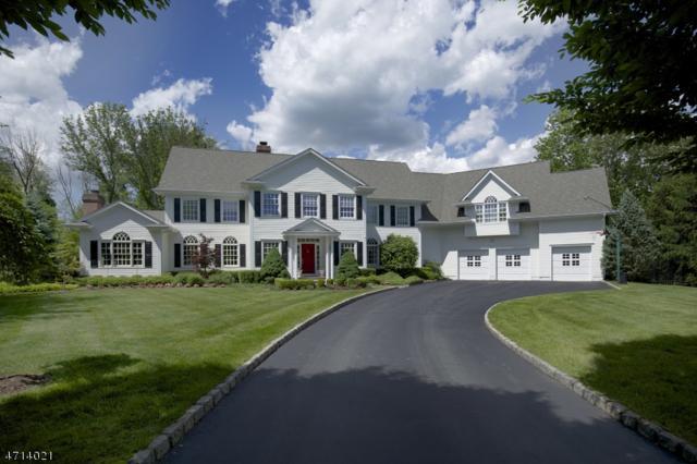 7 Windymere Ln, Mendham Boro, NJ 07945 (MLS #3388114) :: The Dekanski Home Selling Team