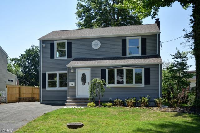239 Boulevard, Kenilworth Boro, NJ 07033 (MLS #3388563) :: The Dekanski Home Selling Team