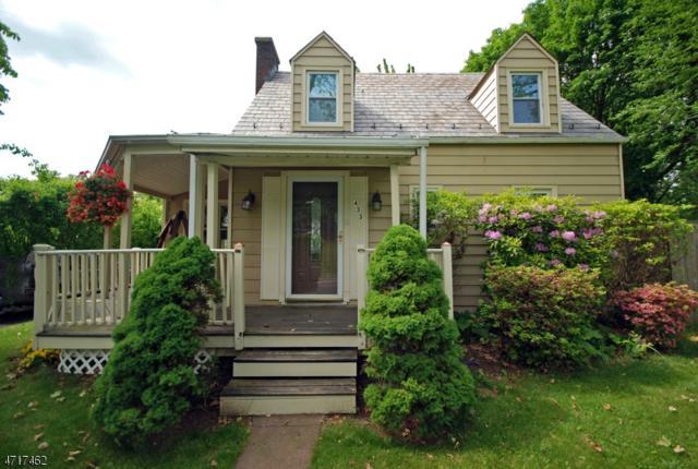 433 St. James Avenue, Pohatcong Twp., NJ 08865 (MLS #3391164) :: The Dekanski Home Selling Team