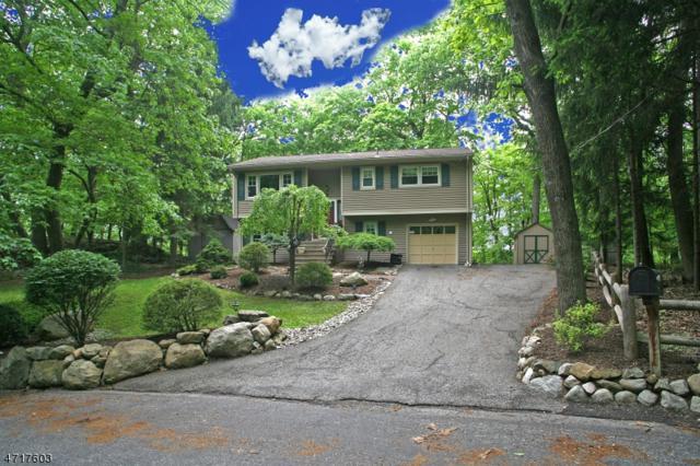 25 Sleepy Hollow Rd, Byram Twp., NJ 07821 (MLS #3391433) :: The Dekanski Home Selling Team