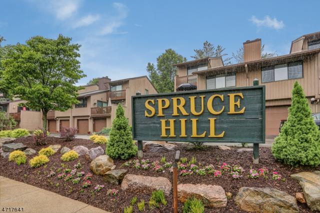 456 Hill St #456, Boonton Town, NJ 07005 (MLS #3391571) :: RE/MAX First Choice Realtors