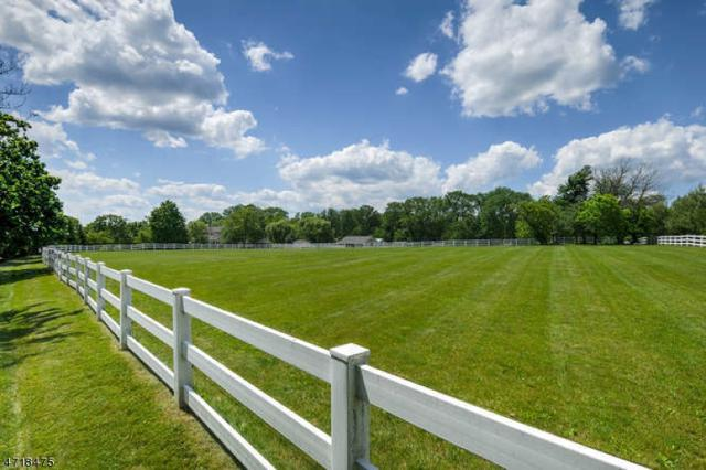 74 Wertsville Rd, Hillsborough Twp., NJ 08844 (MLS #3393749) :: The Dekanski Home Selling Team