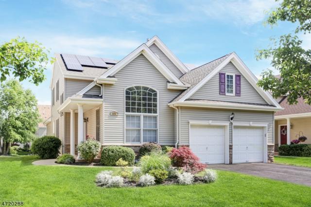 131 Canal Walk Blvd Xxxx, Franklin Twp., NJ 08873 (MLS #3393760) :: The Dekanski Home Selling Team
