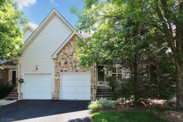 48 Dewitt Ln, Hillsborough Twp., NJ 08844 (MLS #3394340) :: The Dekanski Home Selling Team