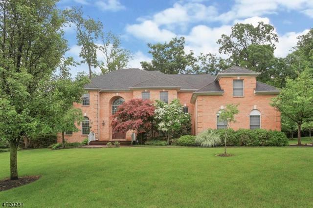 17 Darkwood Ct, Warren Twp., NJ 07059 (MLS #3395290) :: The Dekanski Home Selling Team